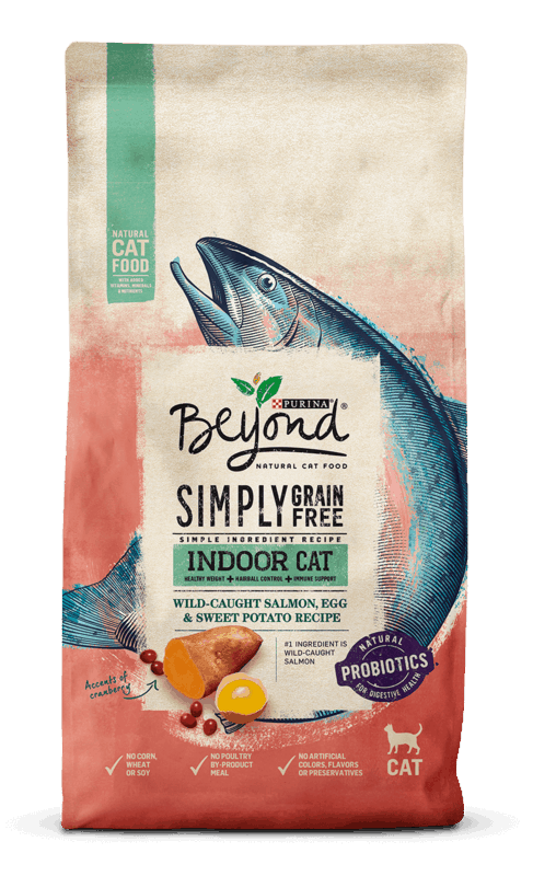 $3.00 for Purina Beyond Dry Cat Food (expiring on Monday, 01/31/2022). Offer available at multiple stores.