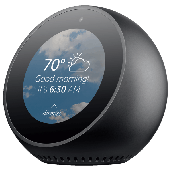 $0.00 for Echo Spot (expiring on Friday, 01/31/2020). Offer available at Amazon.