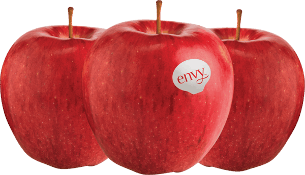 $1.00 for Envy™ Apples. Offer available at multiple stores.