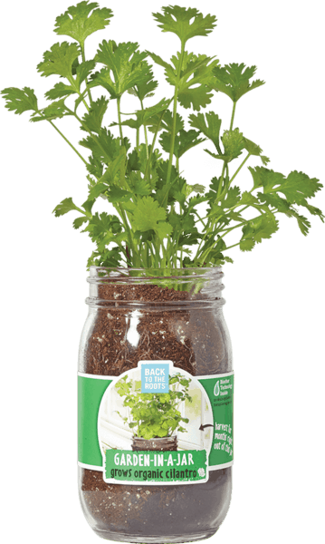 $2.50 for Back to the Roots® Garden-in-a-Jar (expiring on Sunday, 04/01/2018). Offer available at King Soopers, H-E-B, Whole Foods Market®, Home Depot.