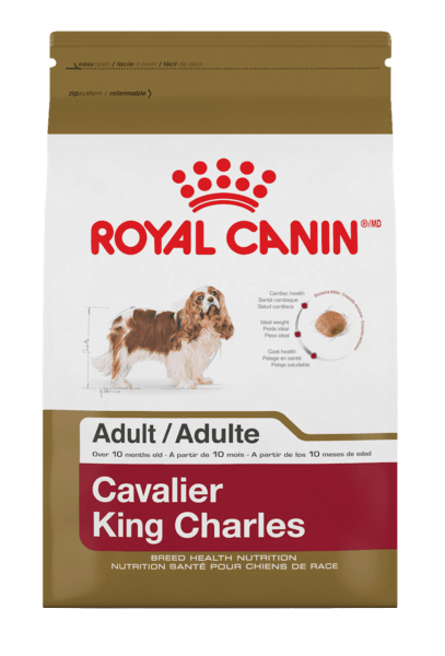 photograph about Royal Canin Printable Coupon referred to as $5.00 for Royal Canin® Canine Food stuff. Present obtainable at PetSmart