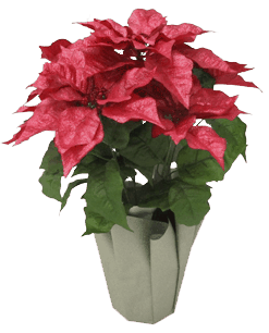$0.50 for Holiday Arrangements (expiring on Wednesday, 12/27/2017). Offer available at JOANN .
