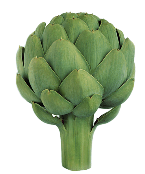 $0.50 for Ocean Mist Farms Artichokes (expiring on Wednesday, 01/02/2019). Offer available at Trader Joe's.