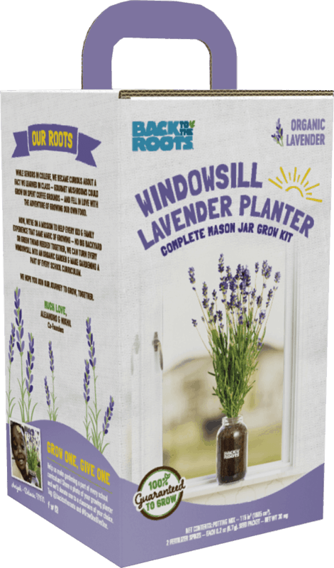 $10.00 for Back to the Roots Windowsill Lavender Planter (expiring on Friday, 04/24/2020). Offer available at Walmart, Walmart Grocery.